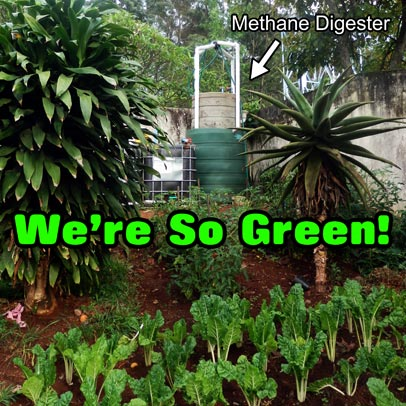 Green Hostel - Methane Digester and vegetable garden